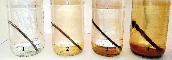 probówki - korozyjność wody Joński